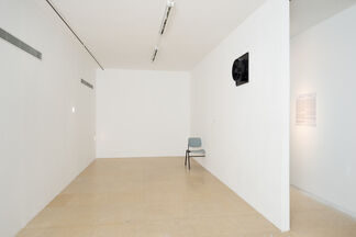 Ariel Reichman: And night they sleep, They do., installation view
