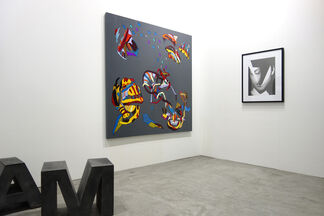 CLEAR EDITION & GALLERY at Art Stage Singapore 2015, installation view