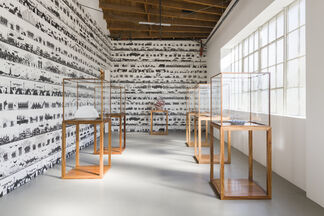 Cao / Humanity, installation view
