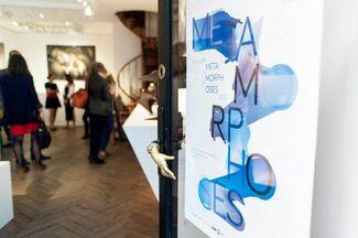 Metamorphoses, installation view
