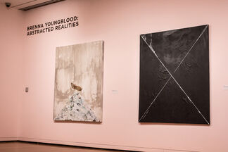 Brenna Youngblood: abstracted realities, installation view