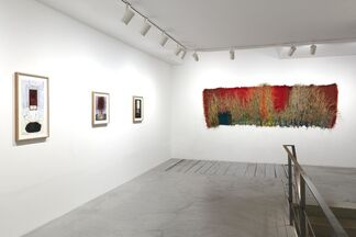 Josep Grau-Garriga, installation view