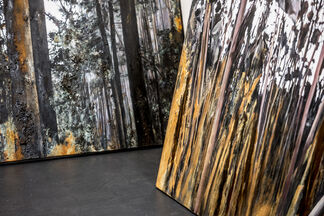 Jens Rausch: Experimentierfeld, installation view