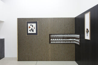 Fossiles, installation view