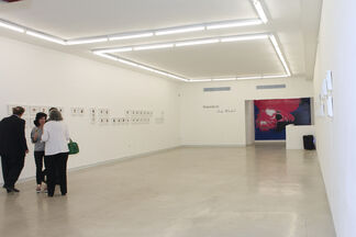 Polaroids by Andy Warhol, installation view