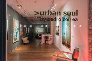 >urban soul, installation view