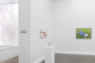 TEACHING STONES  TO SAY FRIENDLY WORDS, installation view