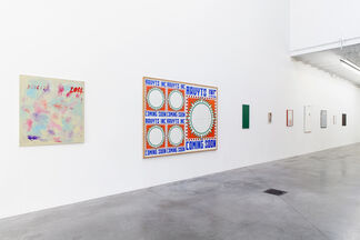 What's the meaning of a goldfish, installation view