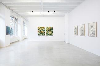 "Ryan Mrozowski, ""shadow nor prey"", installation view"