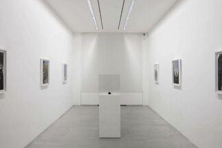 """IVAN ARGOTE """"CALIENTE"""", installation view"""