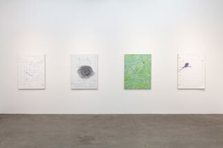 Eric Wesley: Daily Progress Status Reports, installation view