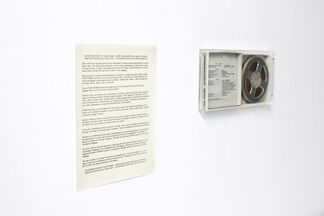 Eduardo Costa, FIVE MUSEUM PIECES, installation view