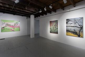 Hédy Gobaa: Végétal, installation view