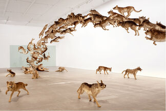 Cai Guo-Qiang: There and Back Again, installation view