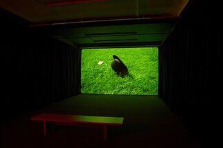 Grasso, Grimonprez, Koh: Three Installations, installation view