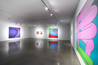 Michael Craig-Martin: All in All, installation view