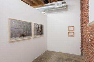 Margarethe Drexel 'Potentilla erecta. Mens sana in corpore sano.', installation view