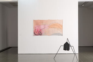 Jimmie Durham: Various Items and Complaints, installation view