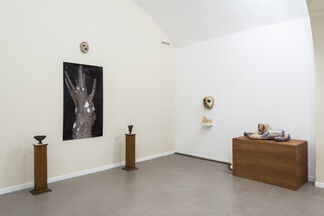 Fusion and absorption, installation view