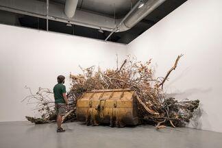 The 15th Istanbul Biennial, installation view