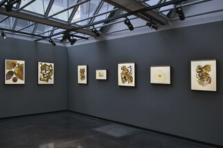 Irving Penn: Paintings, installation view
