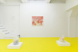 Chest Variations, installation view