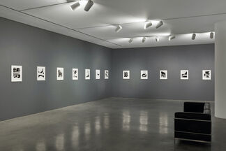 Perspective of Nudes, installation view