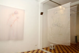 The Dream, installation view