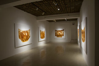 Cal Lane: Veiled Hood and Stains, installation view