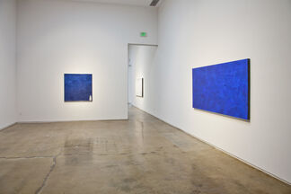 Joe Goode: Old Ideas with New Solutions, installation view