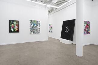 Western Exhibitions/ Scott Speh Gallery at Dallas Art Fair 2015, installation view