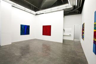 Marcello Lo Giudice: Pigmenti e Colori, installation view