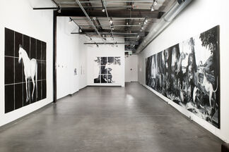 In Dubious Battle, installation view