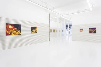 Kabloom!, installation view