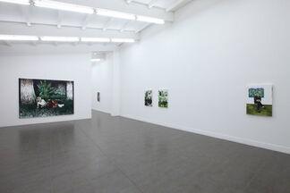 "Raffi Kalenderian ""Green River"", installation view"