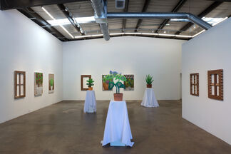 Mike Carney: Looking to See the Thing, installation view