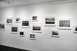 We are not islands, installation view