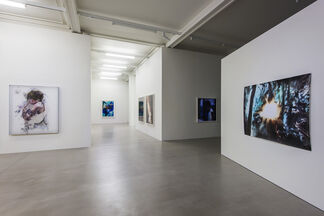 Matt Saunders: Poems of Our Climate, installation view