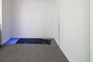 Sarah Pichlkostner -  M: I have two rooms L: I have seen from different windows, installation view
