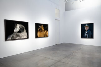 The Dream Goes Over Time, installation view