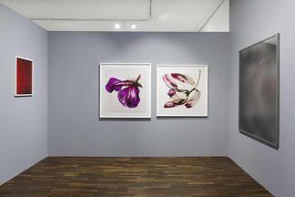 Abstraktionen, installation view