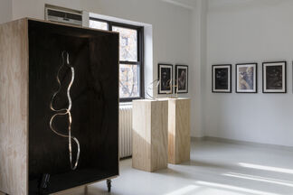 EVES - Sculptural Jewelry by Jacques Jarrige and Photography by Alex Korolkovas, installation view
