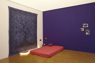 Dominique Gonzalez-Foerster: 1887-2058, installation view
