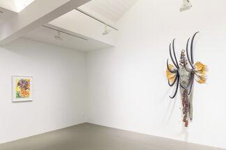 Rina Banerjee: Migration's Breath, installation view