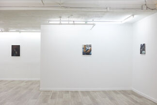 AT THE FEET OF MOUNTAINS, installation view
