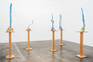 Jacci Den Hartog: The Etiquette of Mountains, installation view