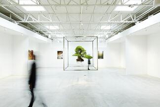 Azuma Makoto SHIKI: Landscape and Beyond, installation view