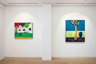 Cara Nahaul - Impossible Garden, installation view