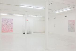 Kadar Brock: scry 2,, installation view