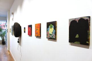 June 2017 - Leon Sadler & Kristy Luck & Ashley Wick & Adam Lovitz, installation view